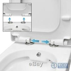 BTW back to wall toilet WC soft close seat hung toilet rimless bidet function