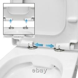 Back to wall BTW ceramic toilet pan wall hanging toilet soft close toilet seat