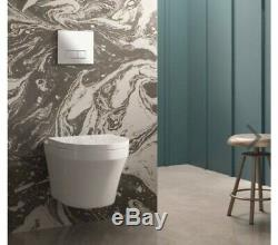 Dual Flush WC Cistern Wall Hung Frame + Modern Toilet Bathroom Victorian Plumbin