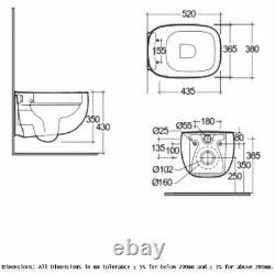 RAK Illusion Wall Hung Rimless Toilet with Soft Close Seat Alpine White